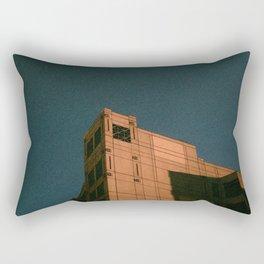 Observant Light Rectangular Pillow