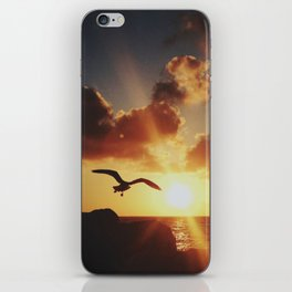 Seagull iPhone Skin