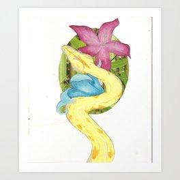 Albino Boa Constrictor Art Print