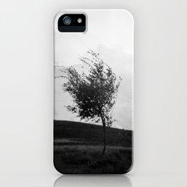 Dartmoor Tree iPhone Case