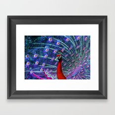 A Different Kind of Peacock Framed Art Print