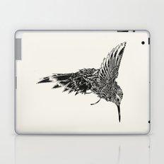HummingBird Plain Laptop & iPad Skin