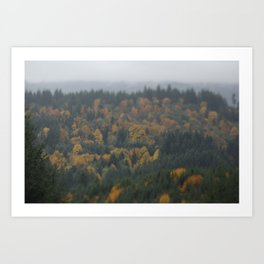 Fog in the great North West Art Print