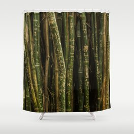 Bamboo grafito Shower Curtain
