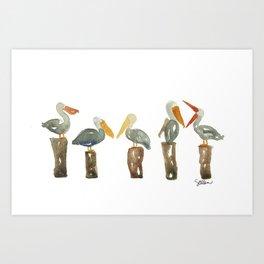 Perched Pelicans Art Print