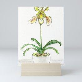 Slipper Orchid Mini Art Print