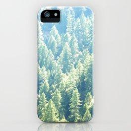 California trees iPhone Case