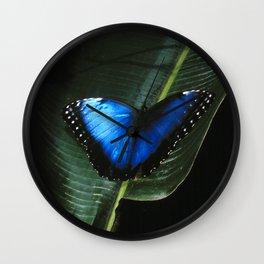 Costa Rican Blue Morpho Butterfly Wall Clock