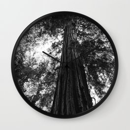 Sequoia National Park V Wall Clock