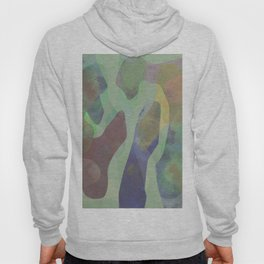 Camouflage XXI Hoody