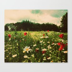 Poppies in Pilling Canvas Print