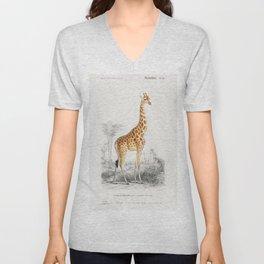 Giraffe (Giraffa Camelopardalis) Illustration Unisex V-Neck