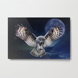 Owl in Flight Metal Print