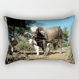 costa rican cows. Rectangular Pillow