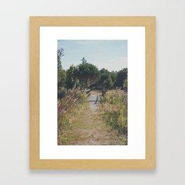 Les Landes (2) Framed Art Print