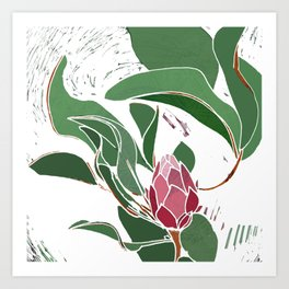 Printed Protea Flower in Pinks and Greens Art Print