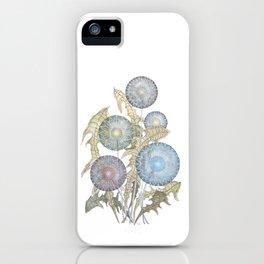 Dandelions watercolor painting iPhone Case