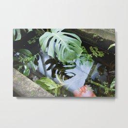 Narcis Metal Print