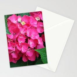 Spring Hydrangea Stationery Cards