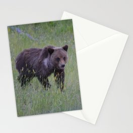 Grizzly cub learns to hunt Stationery Cards