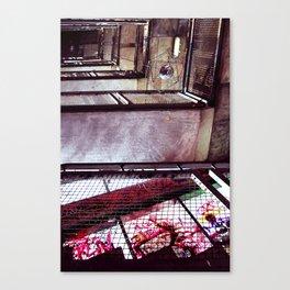 Kunsthaus: Perceptions Canvas Print
