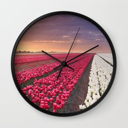 I - Rows of colourful tulips at sunrise in The Netherlands Wall Clock