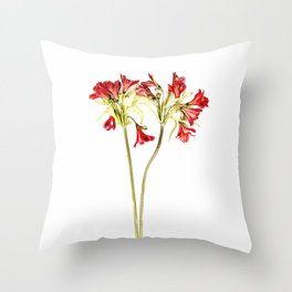 Parrot Lily Throw Pillow