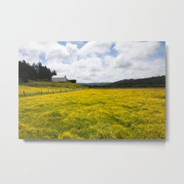 Barn and Yellow Fields Metal Print