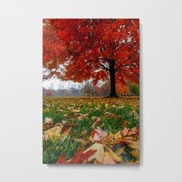 NYC Fall Leaves Metal Print