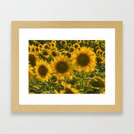 Sunflower Family Framed Art Print