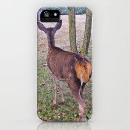 Alert! iPhone Case