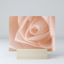 Light Pink Rose Mini Art Print