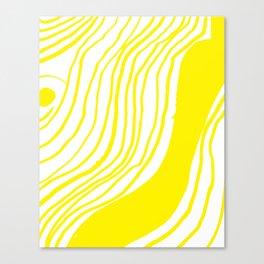 5a Canvas Print