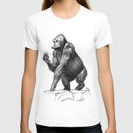 Gorilla, Lille, France. T-shirt