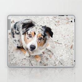 Australian Shepherd Laptop & iPad Skin