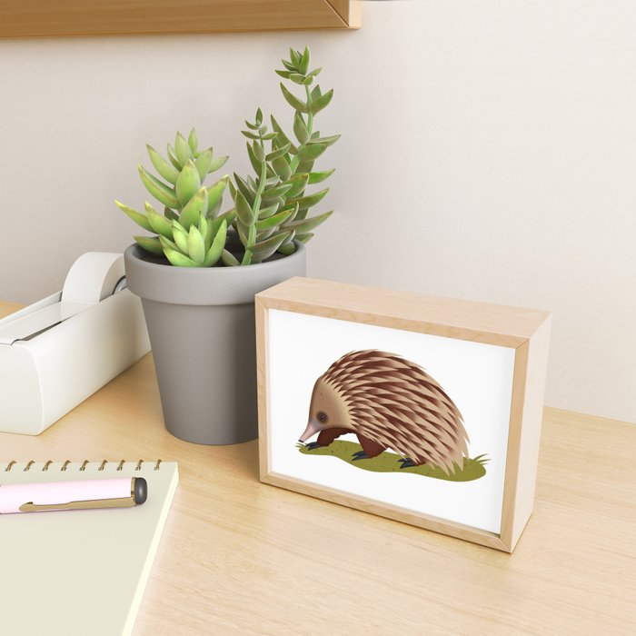 Echidna Framed Mini Art Print