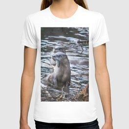 Otters Having Breakfast on the River T-shirt