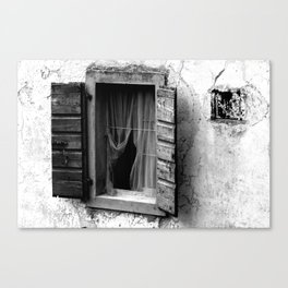 The wooden shell Canvas Print
