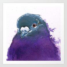 Purple Pigeon Art Print