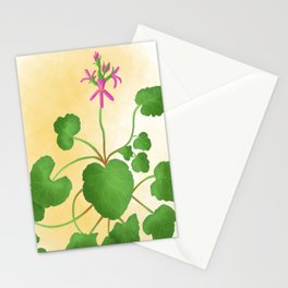 pelargonium grossularioides- fruit/coconut scented leaf Stationery Cards