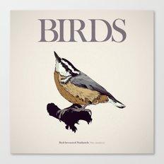 BIRDS 01 Canvas Print