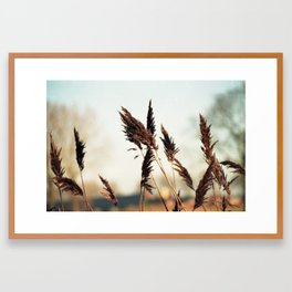 A fresh sunday morning Framed Art Print
