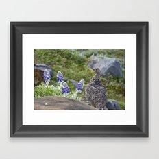 Willow Ptarmagin Framed Art Print