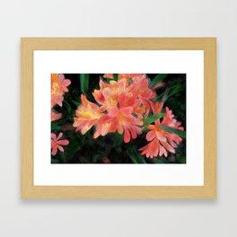Orange flowers on black Framed Art Print