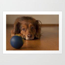 Brown dog and his blue ball Art Print