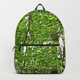 Birches Backpack
