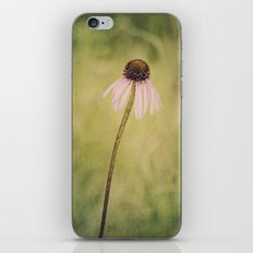 Wild Cone Flower iPhone & iPod Skin