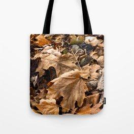 Fall has Fallen Tote Bag
