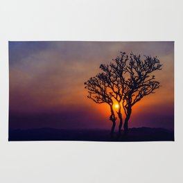 A Sunset Silhouette in Hampi, India Rug