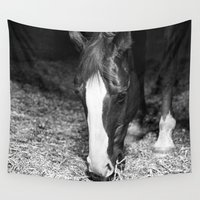 harley Wall Tapestries featuring Harley by Yanina May Photography